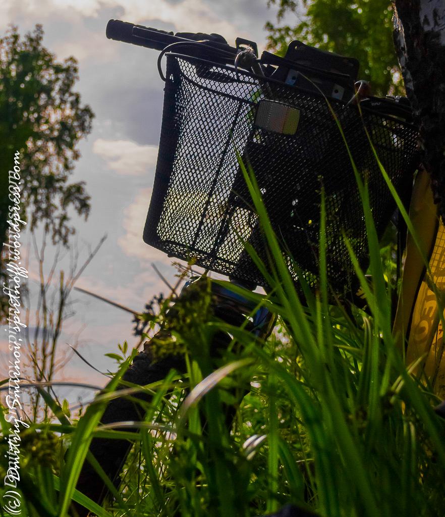blog-6-of-151 Просто фото  Лосиный остров. Съемка природы во время пикника.