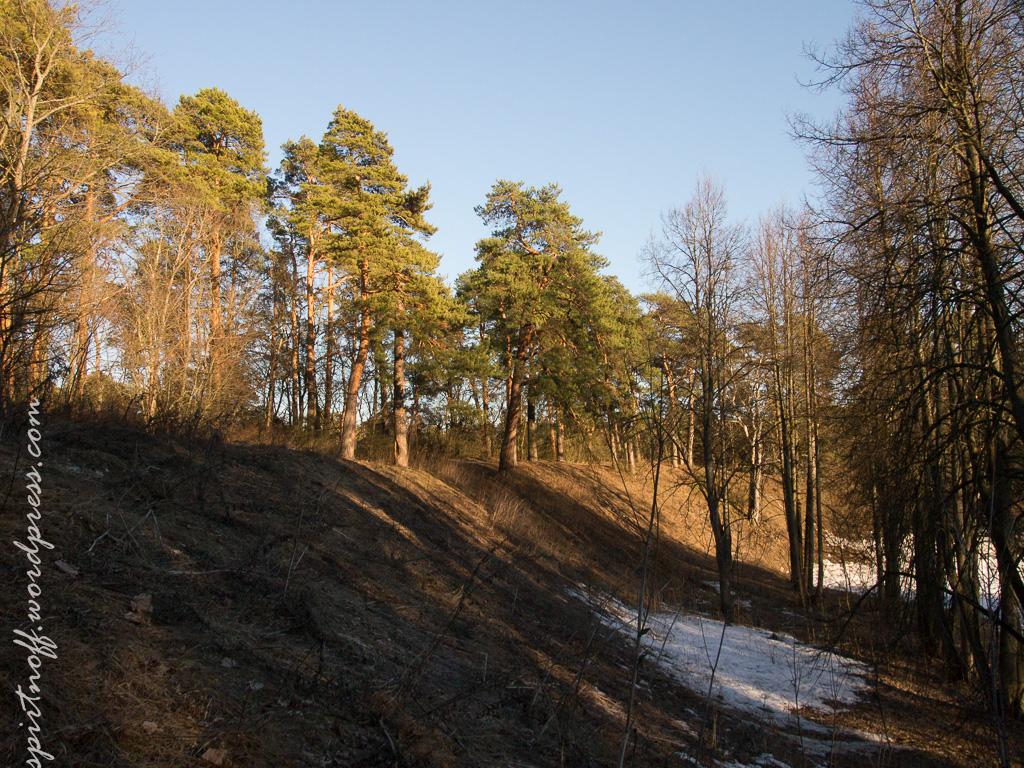 blog-86-of-112 Путешествия  Истра. Звенигород