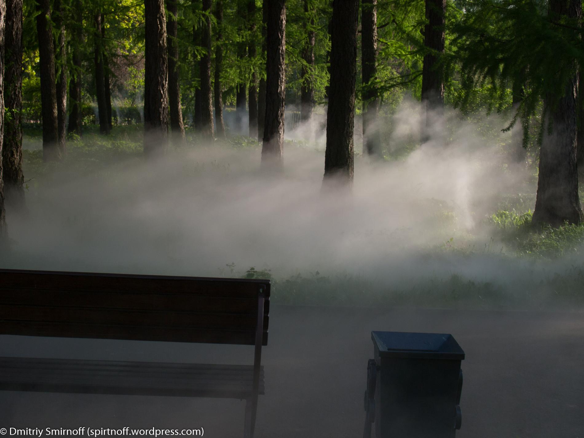 blog-1-of-23 Просто фото  Туман в Сокольниках