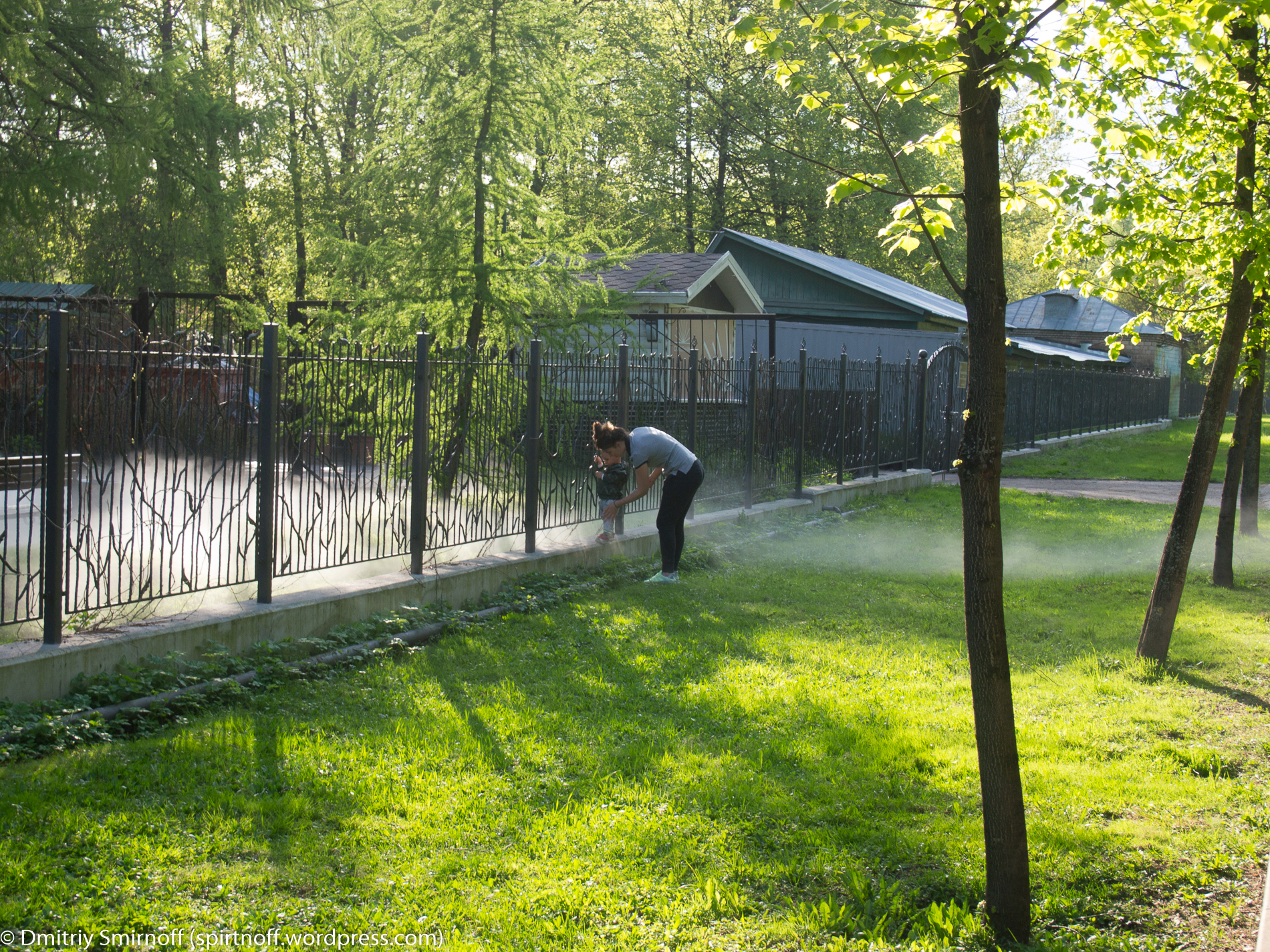 blog-10-of-23 Просто фото  Туман в Сокольниках