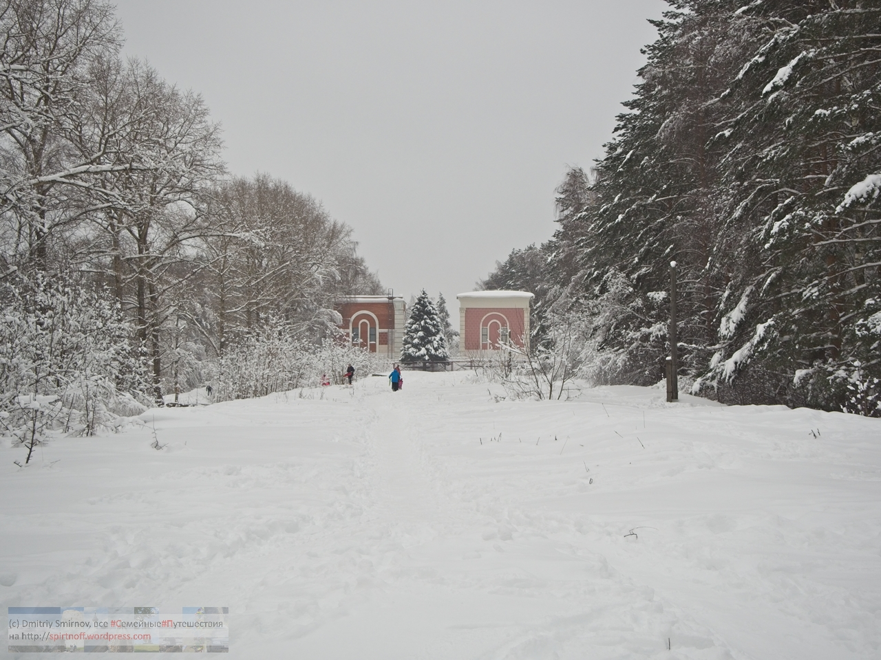 SMI00946-Blog-33 Просто фото  Зима в Лосином острове