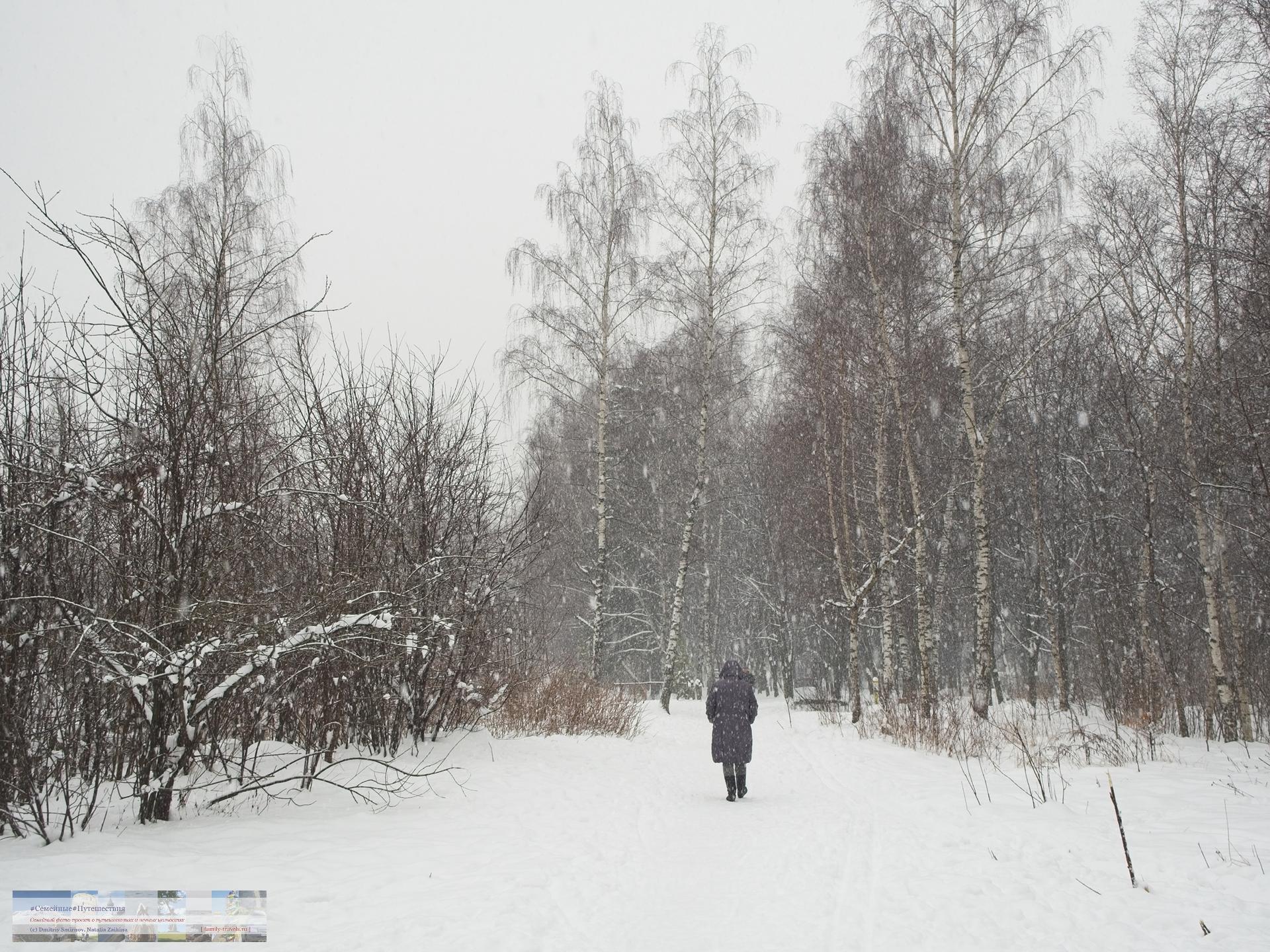 02032018-1232-Blog-017 Просто фото  Снегопад года