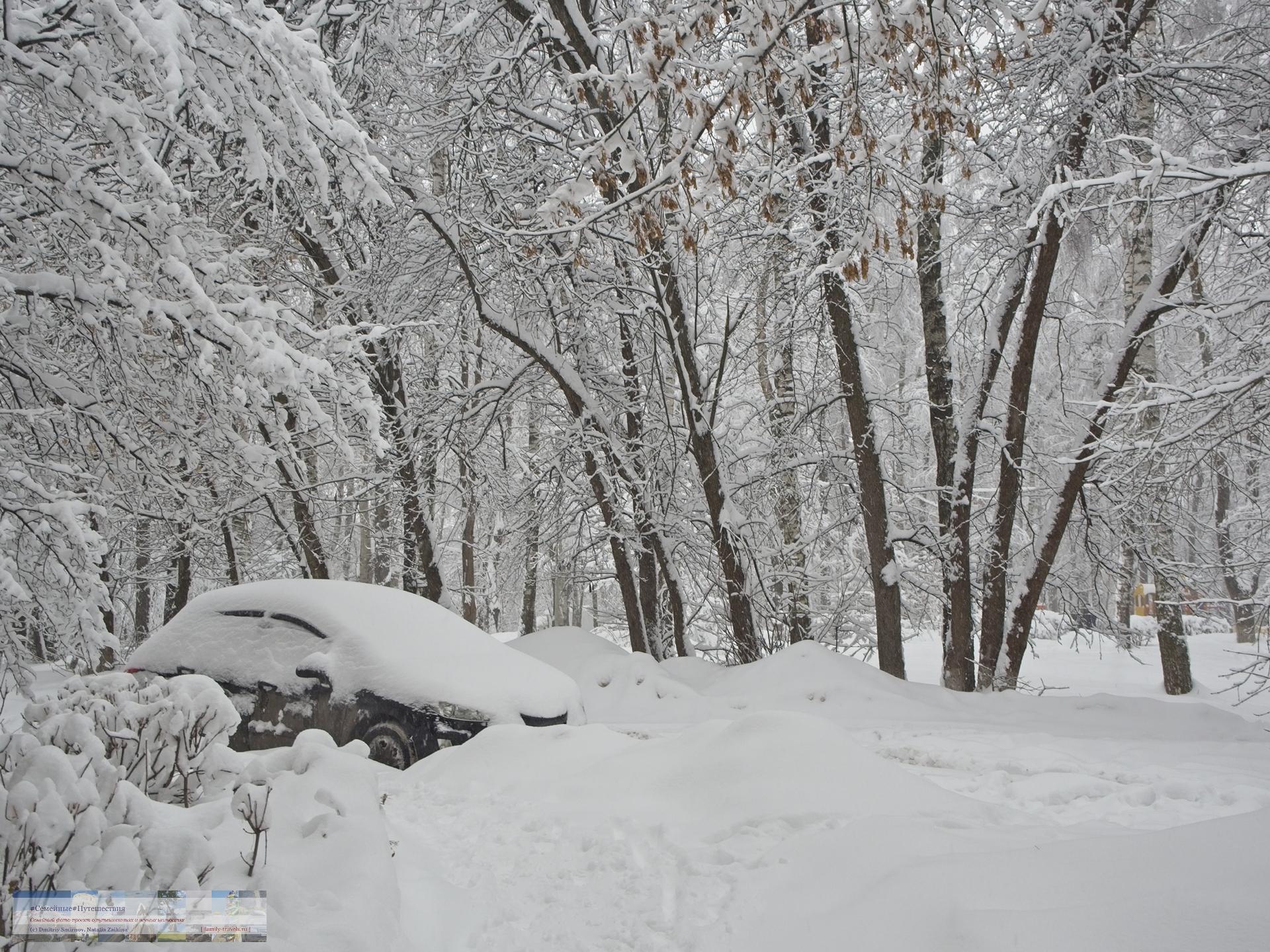 02042018-1336-Blog-084 Просто фото  Снегопад года