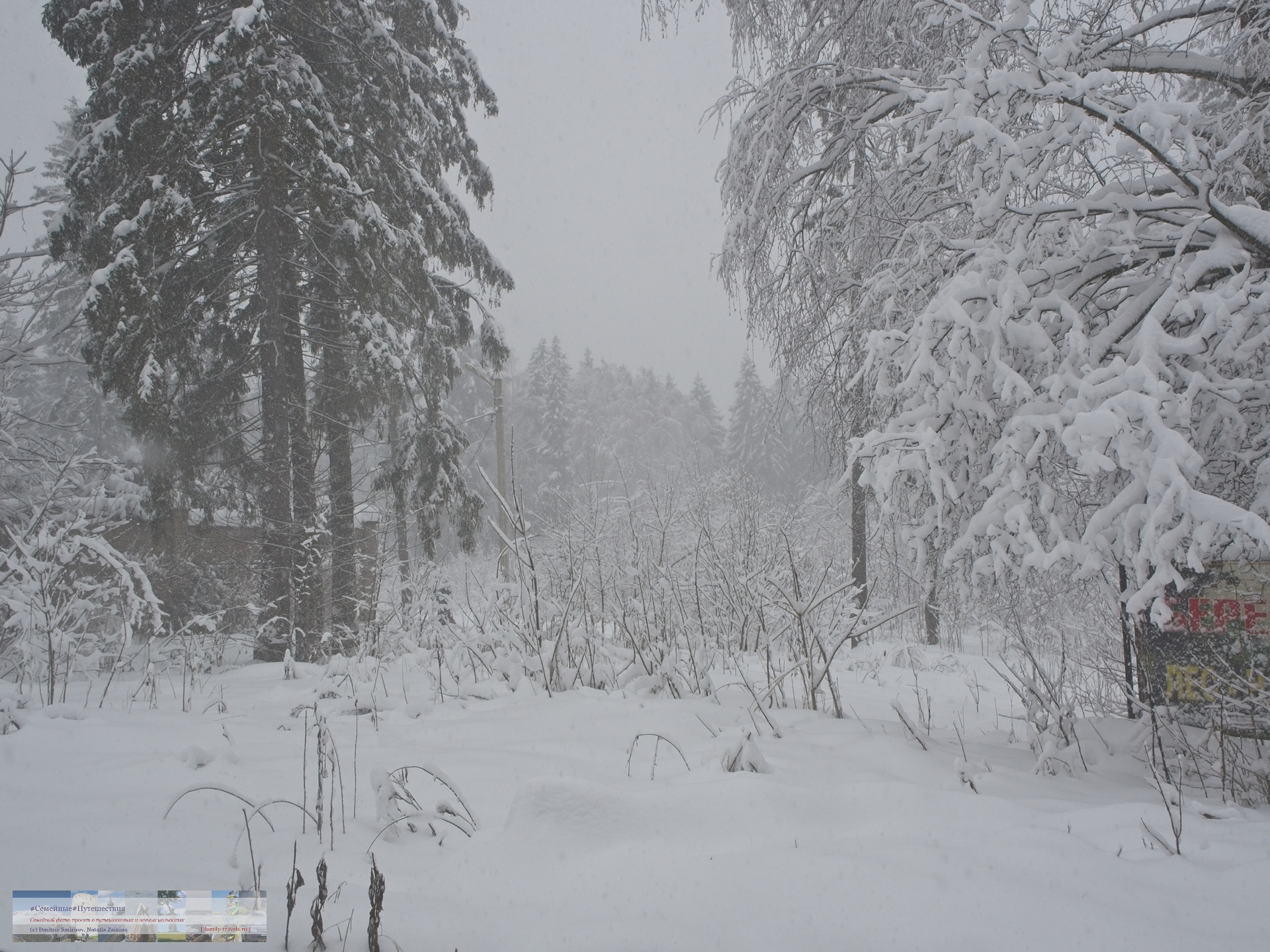 02042018-1424-Blog-048 Просто фото  Снегопад года
