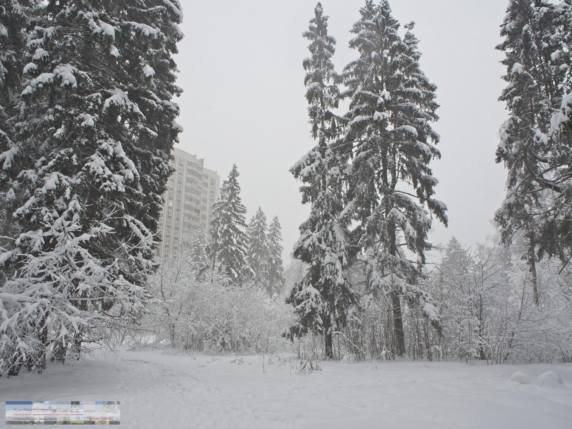 02042018-1431-Blog-022 Просто фото  Снегопад года