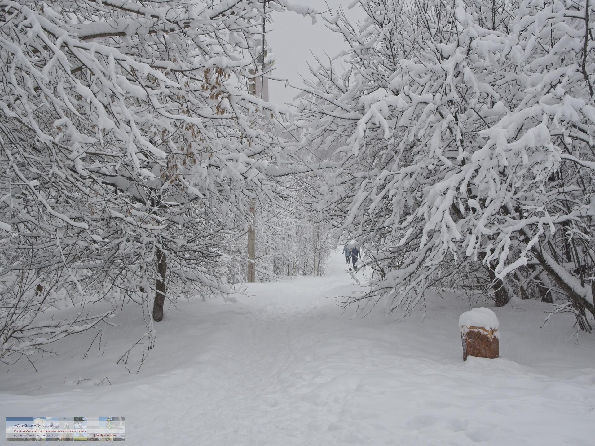 02042018-1438-Blog-046 Просто фото  Снегопад года