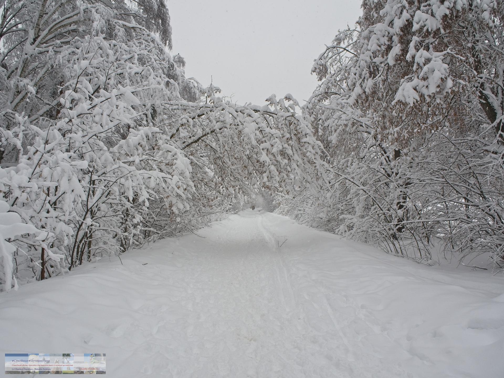 02042018-1503-Blog-037 Просто фото  Снегопад года