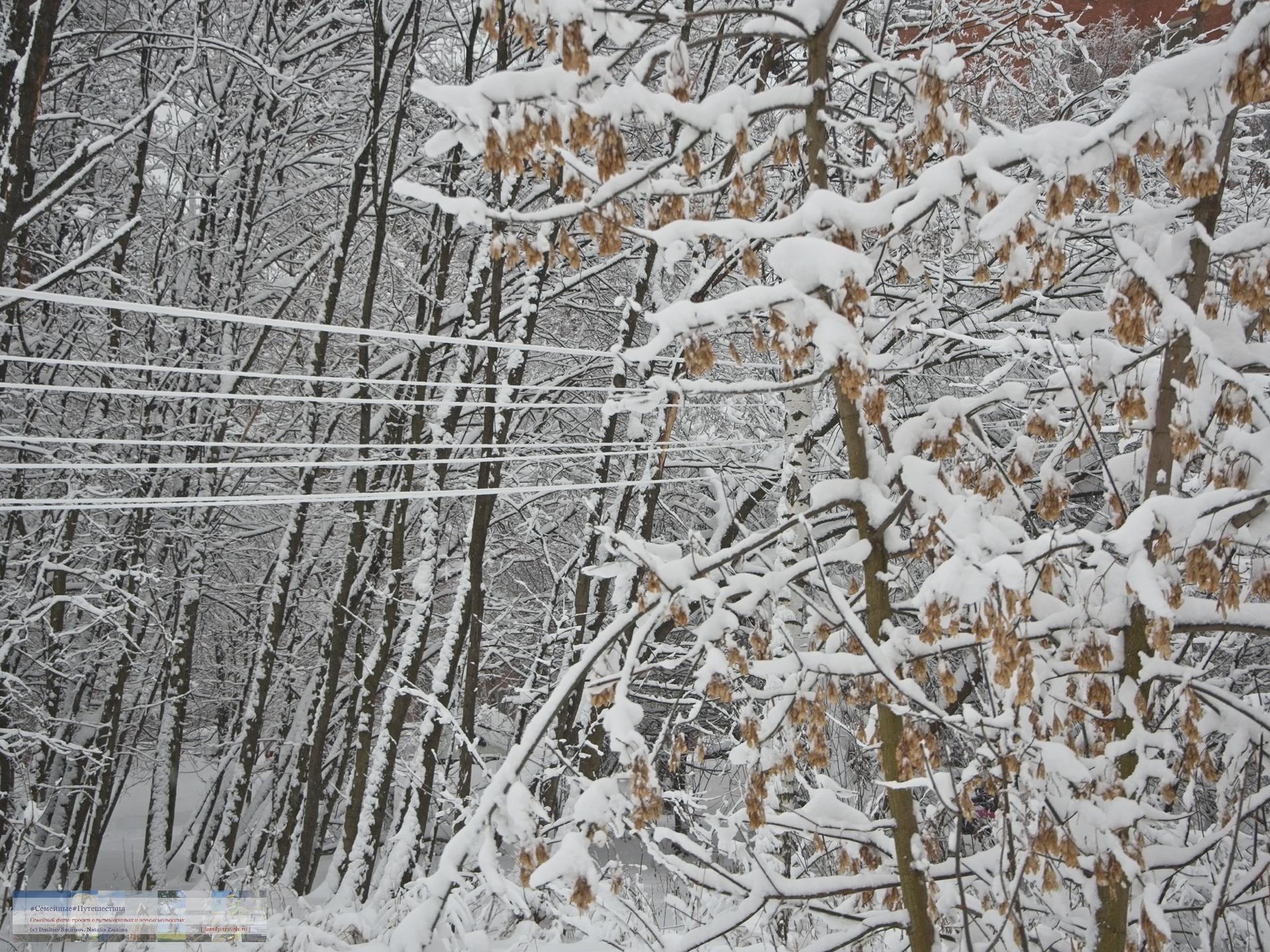 02042018-1517-Blog-040 Просто фото  Снегопад года