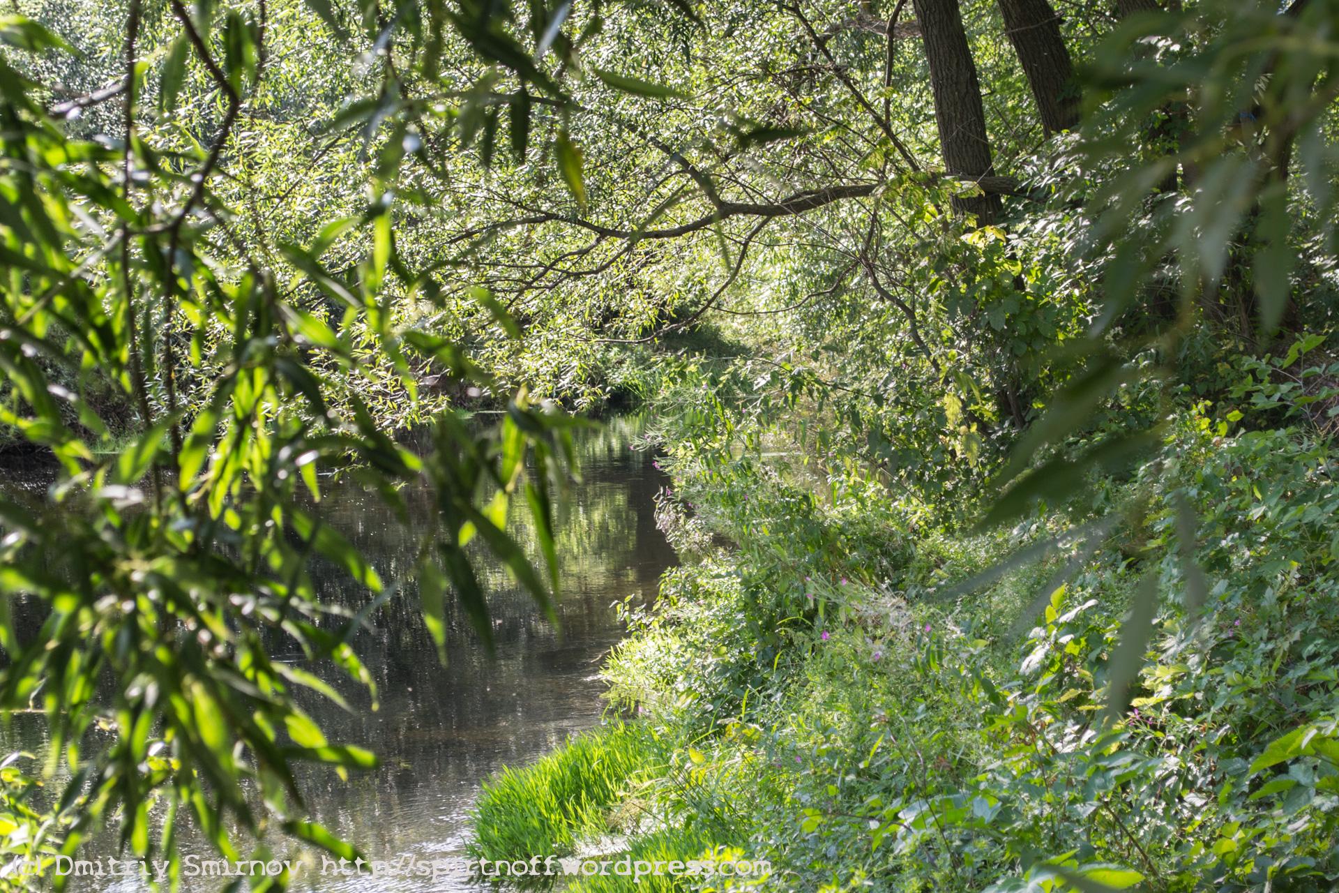 Blog-56-of-105 Путешествия  Куликово поле. Монастырщино