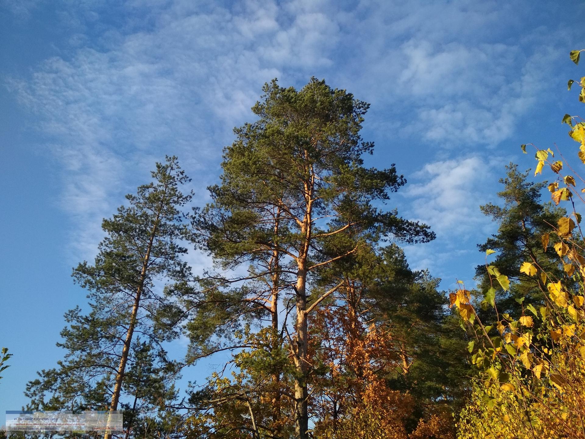 10132018-1620-Blog-03 Просто фото  Золотая осень (2018)