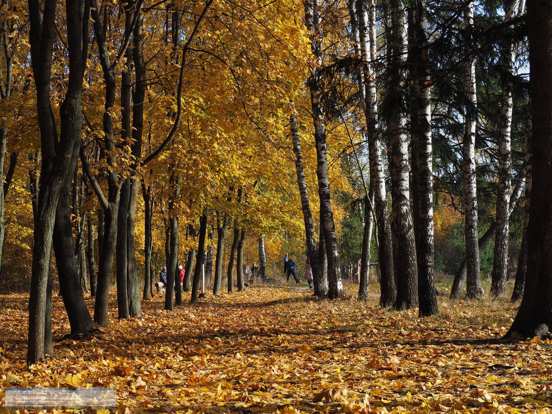 10142018-1444-Blog-037 Просто фото  Золотая осень (2018)