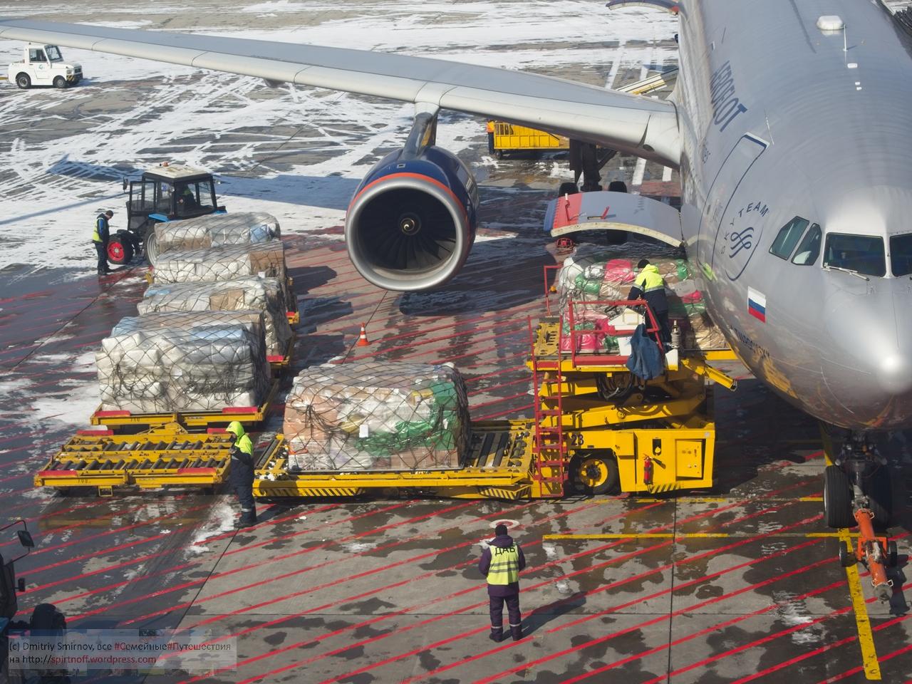SMI23033-Blog-97 Путешествия  Владивосток. Постскриптум (Аэропорт Артем)