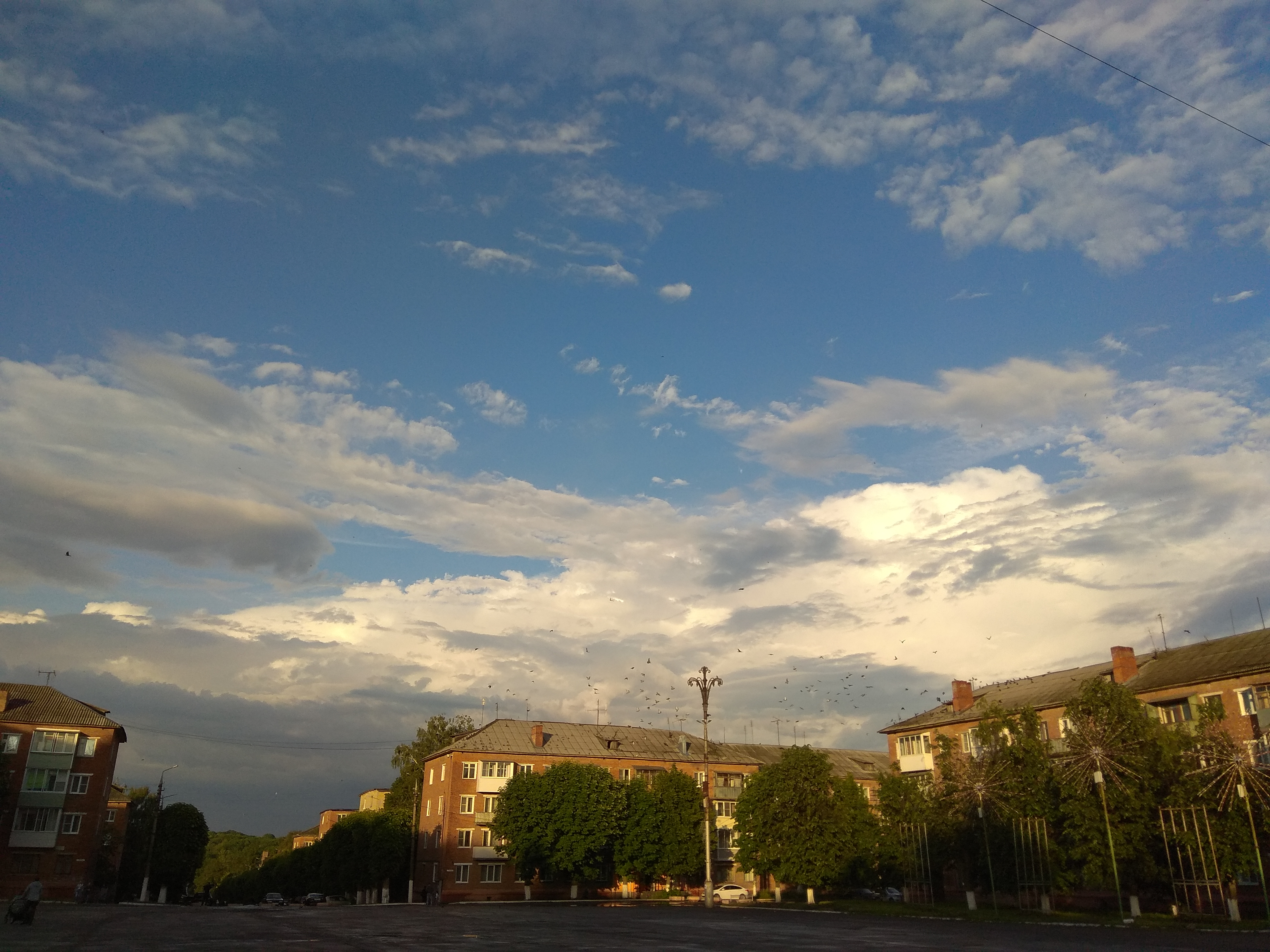 Просто фото  Небо. Просто.