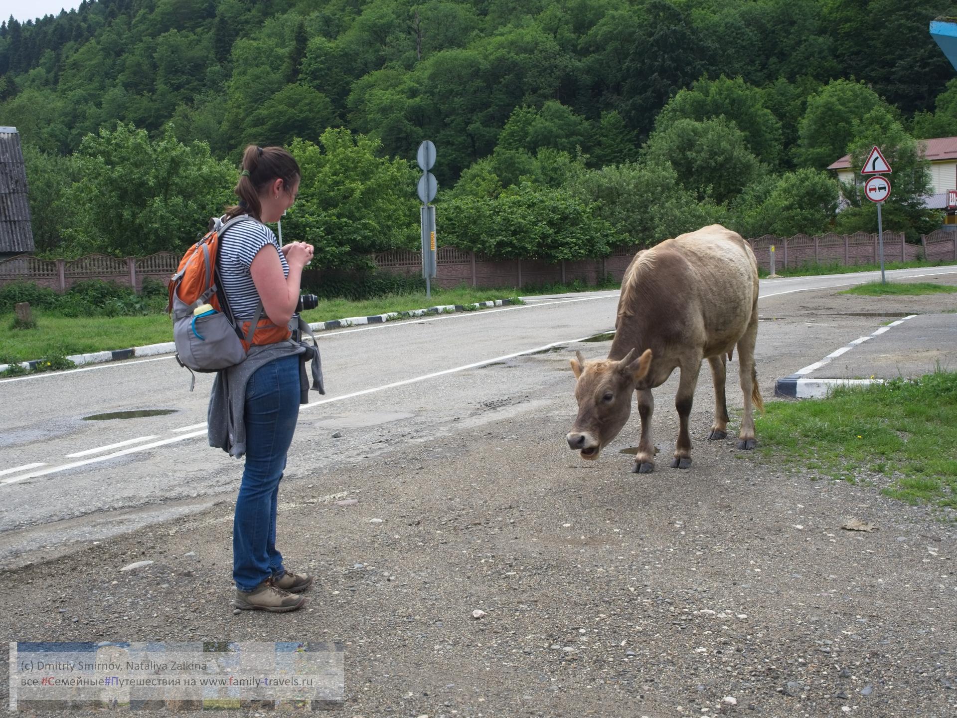 Путешествия  Собираем рюкзаки! (в горы, с детьми, без перегруза)