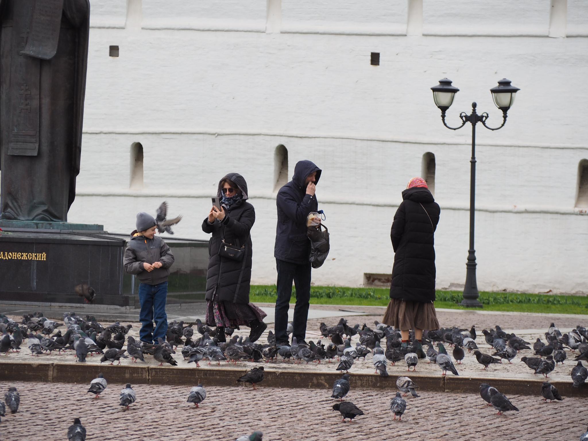 Просто фото  Люди и птицы